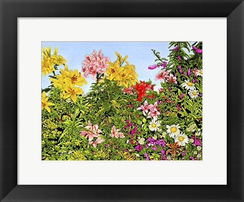 Framed Lovely Lillies Print