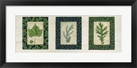 Framed Three Leaves C Print
