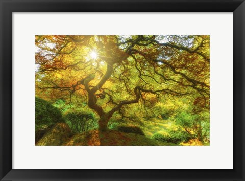 Framed Good Morning Sunshine Print