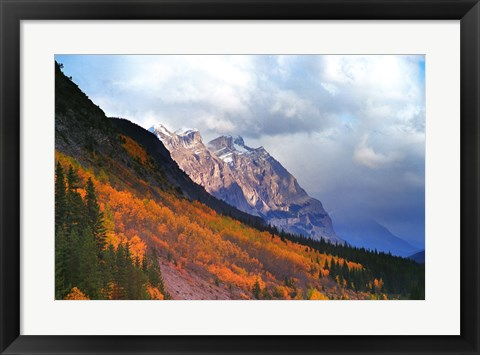 Framed Fall and Winter Print
