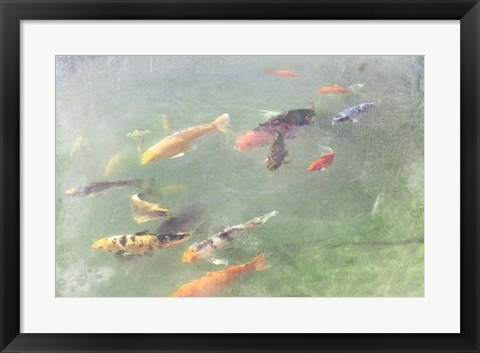 Framed Koi Reflections I Print