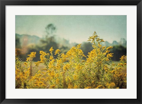 Framed Blissful Country IV Print