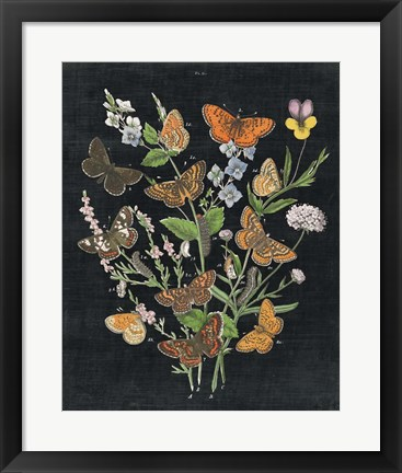 Framed Butterfly Bouquet on Black I Print