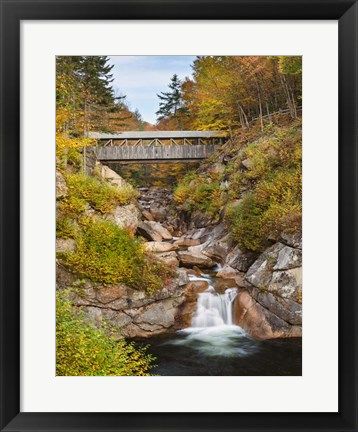 Framed Sentinel Pine Bridge Print