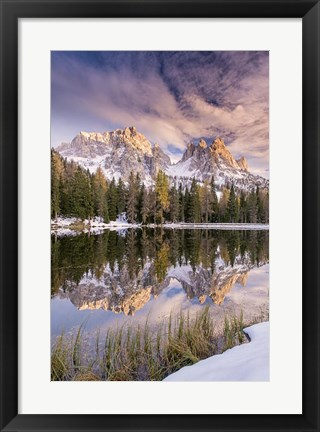 Framed Grass On Shore Print