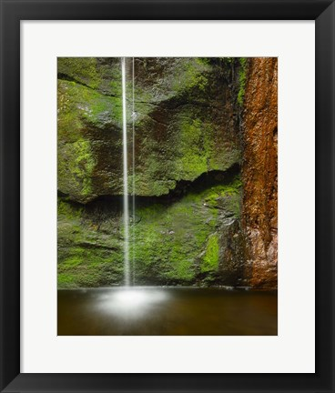 Framed Moss and Rust Print
