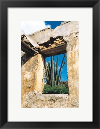 Framed Cactus View Print