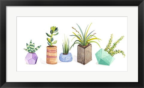 Framed Succulent Display I Print
