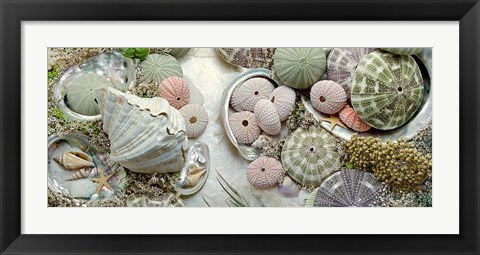 Framed Island Tide Pool No. 7 Print