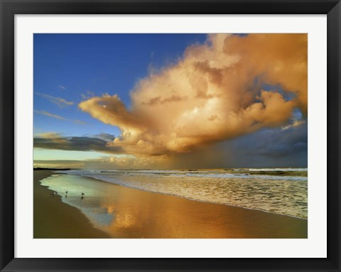 Framed Sunset On The Ocean, New South Wales, Australia Print
