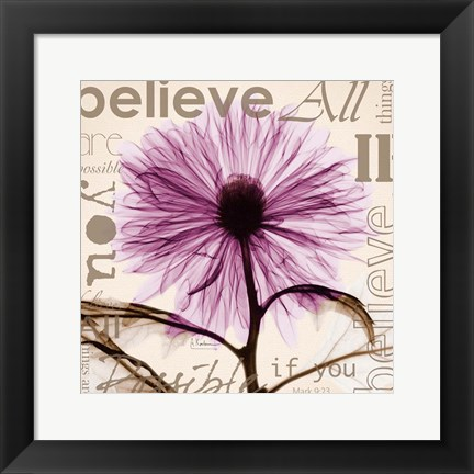 Framed Chrysanthemum Believe Print