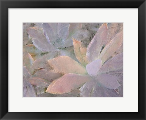 Framed Succulents Print