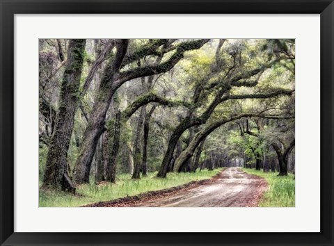 Framed Dirt Road II Print