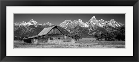 Framed Old barn on a landscape, Grand Teton National Park, Wyoming Print