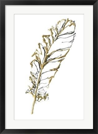 Framed Gilded Turkey Feather I Print