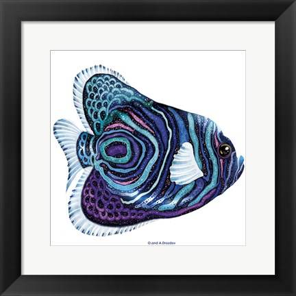 Framed New Fish 3 Print