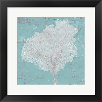 Framed Graphic Sea Fan VII Print