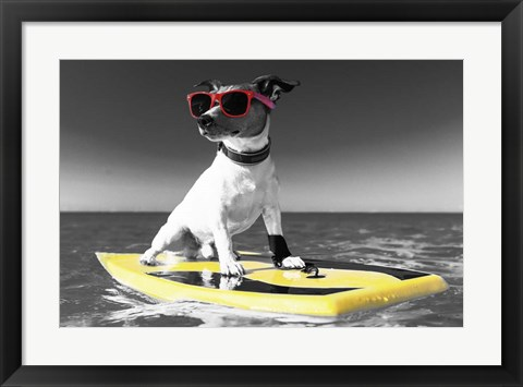 Framed Pop of Color Surf's Up Dog Print