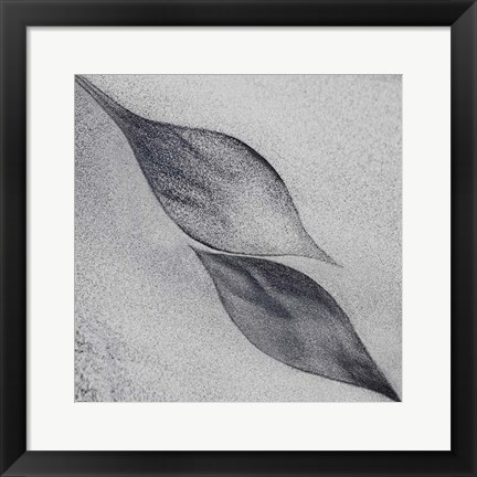 Framed Shaped By A Creative Wind Print