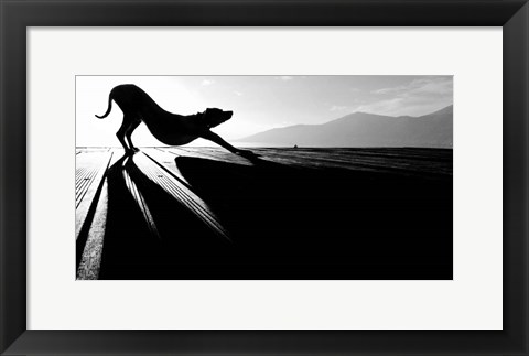 Framed Sun Salutation Print