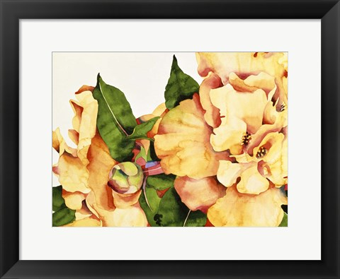 Framed Orange Blossom Print
