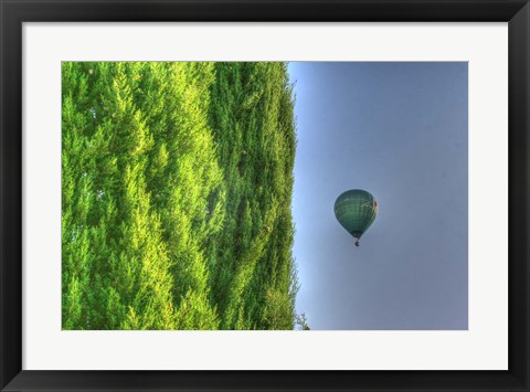 Framed Tuscan Cedar and Balloon Print