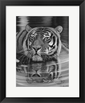 Framed Cool For Cats Print