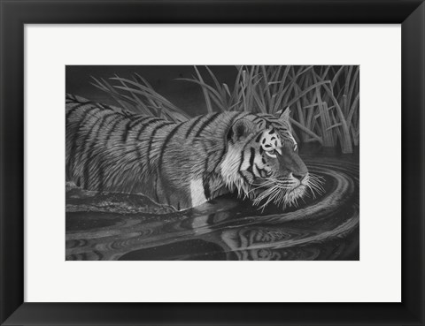 Framed Taking A Dip Print