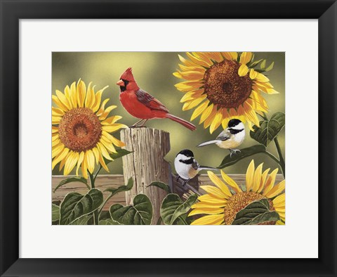 Framed Sunflowers and Songbirds Print