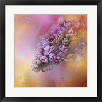 Framed Sun On The Lilacs Print
