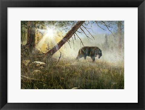 Eyes In The Mist Art By Jim Hansel At Framedart Com