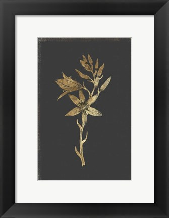 Framed Botanical Gold on Black I Print