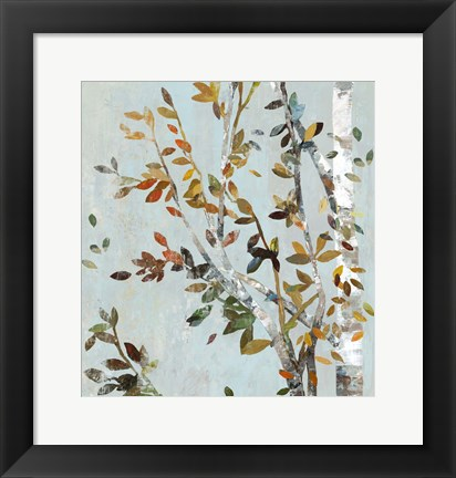 Framed Birch with Leaves II Print