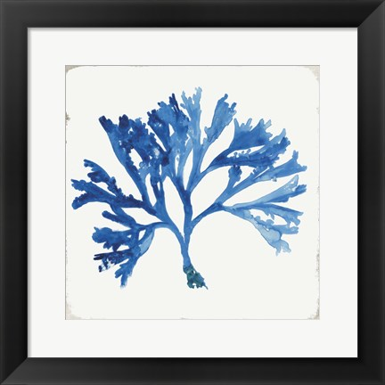 Framed Blue and Green Coral IV Print