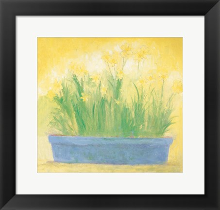 Framed Window Box with Narcissi Print