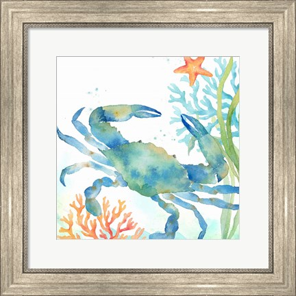 Framed Sea Life Serenade II Print