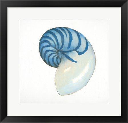 Framed Navy Nautilus Shell Print