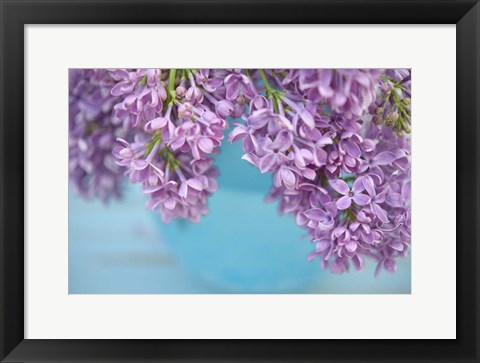 Framed Lilacs in Blue Vase V Print
