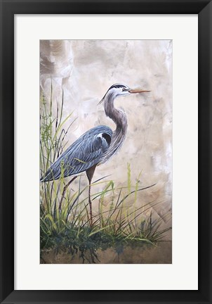 Framed In The Reeds - Blue Heron - A Print
