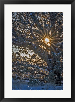 Framed New Years Steens Mountain Sunrise Print