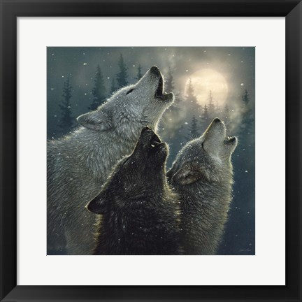 Framed Howling Wolves - In Harmony Print