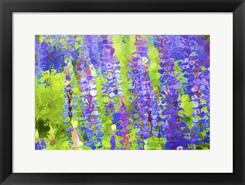 Framed Fluid Flowers VIII Print