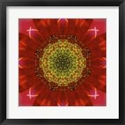 Colorful Kaleidoscope 7