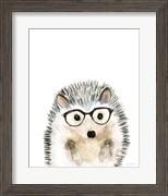 Hedgehog in Glasses