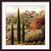 Tuscany Vineyard II