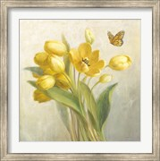 Yellow French Tulips