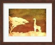 Safari Sunrise IV