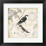 Botanical Birds Black Cream II