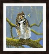 Fearless Owl