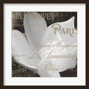 Fleurs Blanc II
